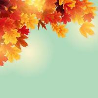 glanzende herfstbladeren banner achtergrond vector