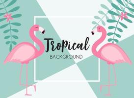 schattige zomer abstracte frame achtergrond met roze flamingo vectorillustratie vector