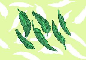 Bananenblad vectorillustratie