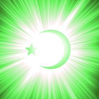 Naties van de islam vector