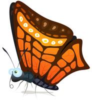 Vlinder vector