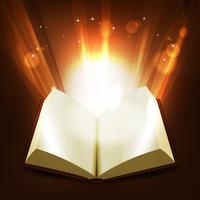 Heilige en magische boek vector