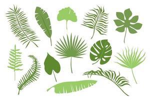 hand getrokken kleur takken van tropische planten bladeren geïsoleerd op een witte achtergrond. silhouet platte vectorillustratie. ontwerp voor patroon, logo, sjabloon, banner, posters, uitnodiging, wenskaart, vector