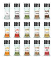 Specerijen, peper, zaden en specerijen Set vector