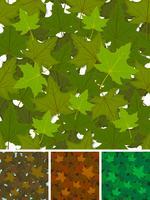 Naadloze esdoorn bladeren achtergrond instellen vector