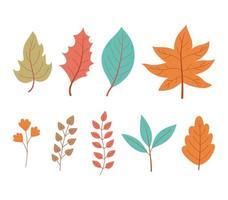 herfstbladeren esdoorn tak gebladerte natuur icon set vector
