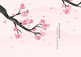 Cherry Blossoms Background Illustration vector