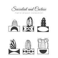 Hand getrokken succulent en cactussen ingesteld vector