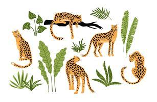 Vestor set van luipaarden en tropische bladeren.