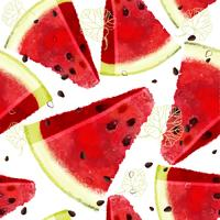 Watermeloen vector naadloos patroon, sappig stuk, de zomersamenstelling van rode plakken van watermeloen.
