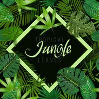 Tropische bladeren op witte achtergrond met geïsoleerde teken Hawaï