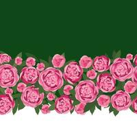 bloem pioen slinger naadloze patroon. bloemenboeket grenskader. bloeien wenskaart ontwerp. bloeiende tuin roze bloemen geïsoleerd op lichtgroene zomer achtergrond vector