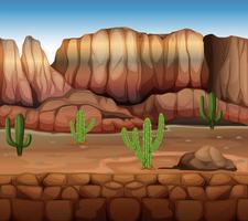 Scène met cactus en canyon vector