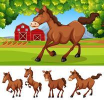 Paarden op de landbouwgrond vector