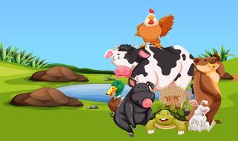 Boerderijdieren op het boerenerf vector