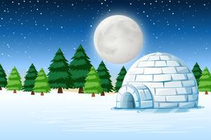 Iglo in het landschap van de de winternacht