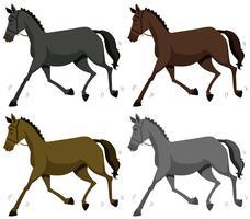 Paard in vier kleuren vector