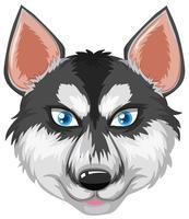 Gezicht van Siberische husky vector