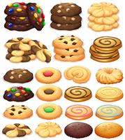 Verschillende soorten cookies vector