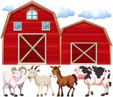 Boerderijdieren en boerderijen vector