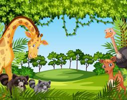 Wild dier in de natuur vector