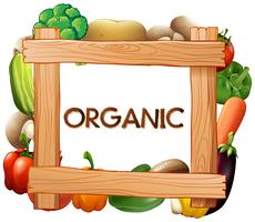 Kadersjabloon met verse groenten vector
