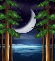 Een halve maan aan de hemel