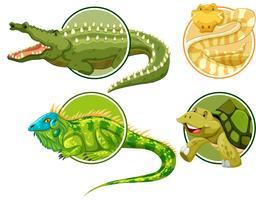 Set van reptielen op cirkel sticker sjabloon