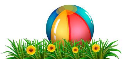 Een bal dichtbij de groene installaties met bloemen