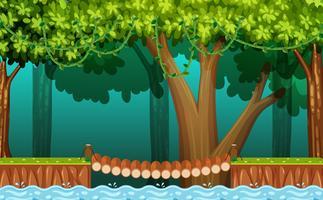 De houten brug in het bos