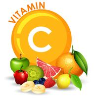 Een set high-vitamine C-fruit vector
