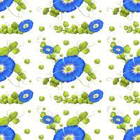 Naadloze achtergrond met de blauwe bloemen van de ochtendglorie vector