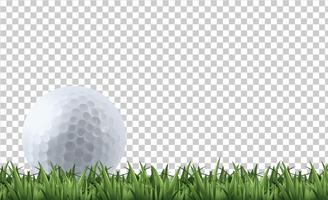 Golfbal op gras vector