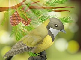 Een mooie vogel op pijnboom