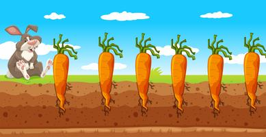 een konijn in een wortelboerderij vector