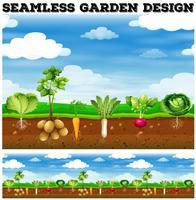 Verschillende soorten groenten in de tuin vector