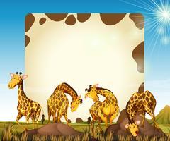 Grensmalplaatje met vele giraffen op het gebied