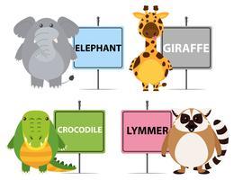 Vier soorten wilde dieren met namen vector