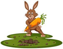 Schattig konijntje en gigantische wortel