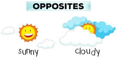 Tegengestelde woorden voor zonnig en bewolkt vector