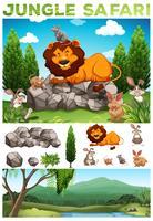 Wilde dieren in de jungle safari vector