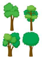 Vier vormen van bomen