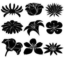 Set van zwarte bloemen vector
