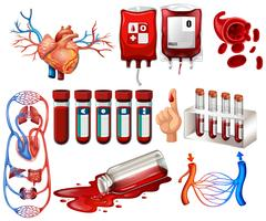 Menselijk bloed en organen vector