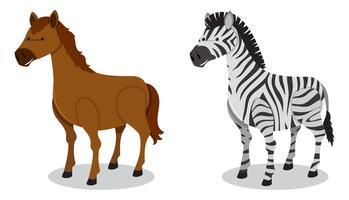 Paard en Zebra op witte achtergrond vector