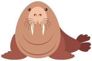 Walrus met blij gezicht vector