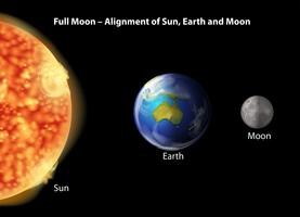 Volle maan uitlijning vector