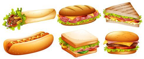 Ander soort fastfood vector