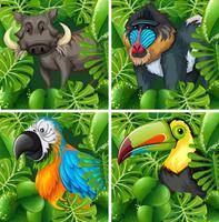 Wilde dieren in de safari vector