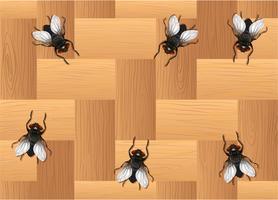Veel vliegen op de houten vloer